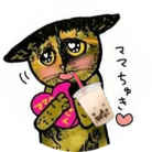 めけこ@冷えピタと共に生きる ( creamfocus )