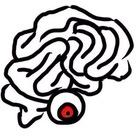 Xhaotic Brainのお店 ( XhaoticBrainShop )