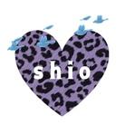 Shio ( shio_ch_an )