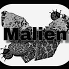 malien ( mai_iriiee )