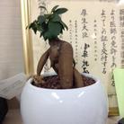 京 ( 1999seiryou )