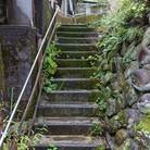 路地と廃墟と緑 ( rojitohaikyo )