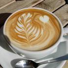 かふぇらて ( latte_www )