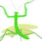 BRAVE MANTIS ( brave_mantis )