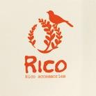 Rico-accessories ( Rico-R )