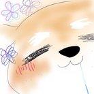 シャム犬 ( syhamu_ken )