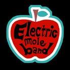 えれも~る♪/Electric mole BAND ( roycomroy )