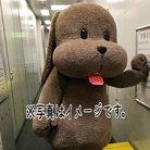 ひーにゃん(♡) ( painless_candy )