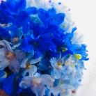 Flower-Flower