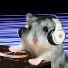 DJ GONTA ( DJ_GONTA_GOODS )