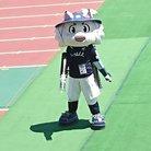さかきほたる ( kamiaridzuki )