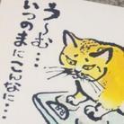 サトシ〜ノ☆ ( katohmack )