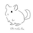 chouchou ( suuuu1004 )