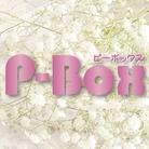 P-Box ( p--box )