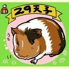 ふく(虹の国)@みるきぃ ( milky74goshawk )
