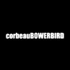 コルボワ ( corbeauBOWERBIRD )