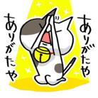 しんご@ねこLINEスタンプ販売中 ( SHiNGO3545 )
