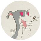 Houndy's supply 【ハウンディーズ】 ( houndys_dog_clothes )