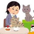 ひとみ ( pittari_ )