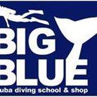 ダイビング大阪ビッグブルー ( big_blue_diving )