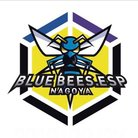 BLUE BEES.ESP ( bluebees )