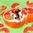 秋菜 ( akina_illustration )