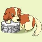 ドラムショップ ( drum )