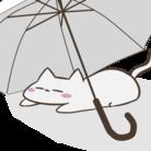 ヒガサ ( higasakasa )
