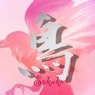 エロ子 【さく子】 ( sakukonikimeta )
