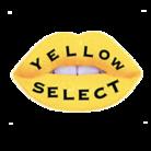 yellow_k