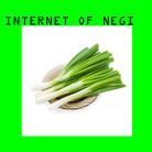INTERNET OF NEGI ( kuroyanagiteppei )
