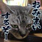山口まくら ( makurara )