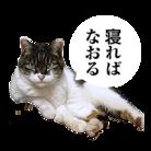 「寝れば治る。」 ( nerebanaoru )