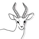 鹿百貨店 ( gazelles )