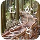 むかしごと研究会 ( mukashigo )