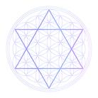 フラワーオブライフ (神聖幾何学) ( SHI-ON )