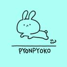 ショップくるぱち ( kuru_pachi )