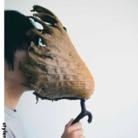 雨林Design ( souya938 )