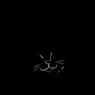 猫社謹製 ( grnm_iwako )