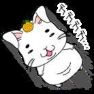 まろぴー(と、その他) ( yuutan )