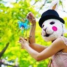Barbara Murata/バーバラ村田 ( barbarabbit )