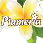 プルメリア ( plumeria-nail )