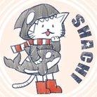 シャチ ( shachispoon )