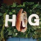 hotdog_hog