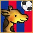 ushishi ( ushishi_soccer )