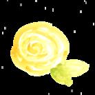 smile flower  ( keiko_ )