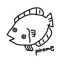 pirame shop ( piramerin333 )