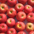 りんご。 ( appie )