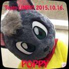 黒猫のポピー ( poppysakana )