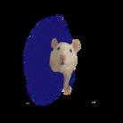 ネズミ 時々 子ネコ ( mochopon )
